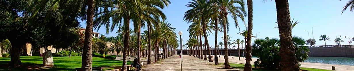 asesoría en Palma de Mallorca